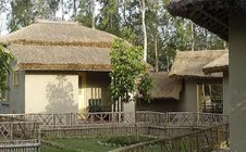 sunderban-jungle-camp